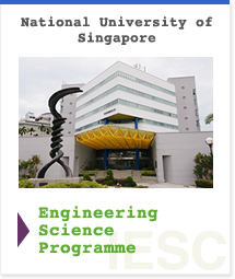 National University of Singapore Engineering Science Programme